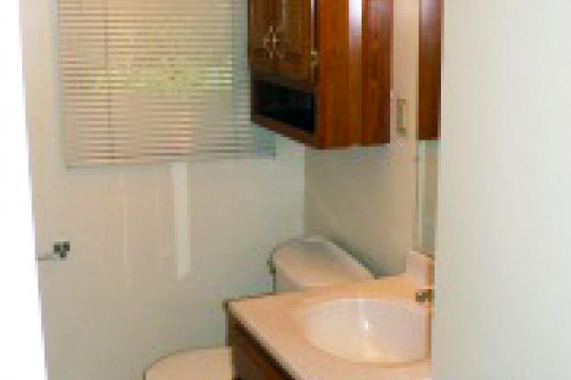 Each bathroom has cabinet storage above the toilet and below the sink