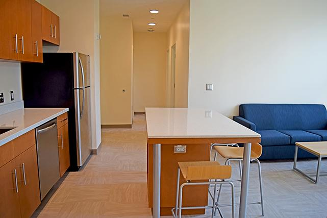 Kitchens flow into the living room space