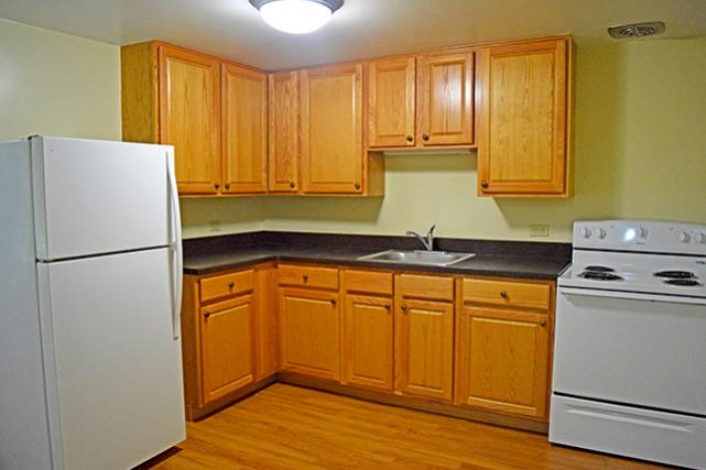 Kitchens feature ample counter and cabinet space