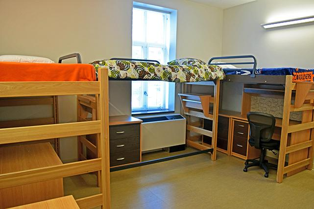 Tripled room in Gibbons