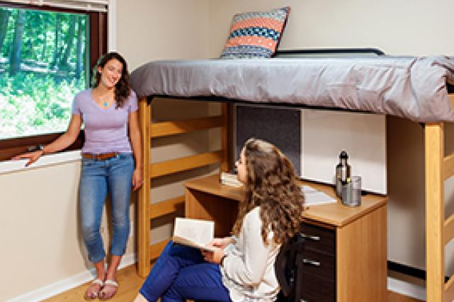 Bed heights are adjustable so that the desk can be placed under the bed.