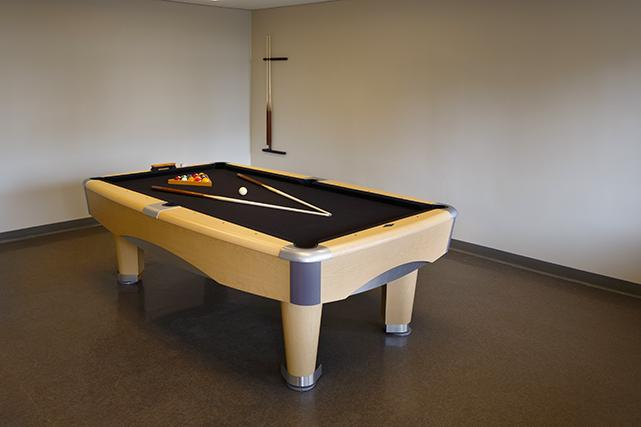 Pool table in the TV lounge in Fitzhugh